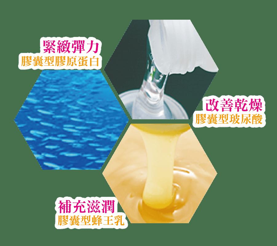 緊緻彈力的膠囊形膠原蛋白,改善乾燥膠囊型玻尿酸,補充滋潤的膠囊形蜂王乳